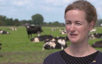 Video – GLZ Tierschutz – Stefanie Pöpken