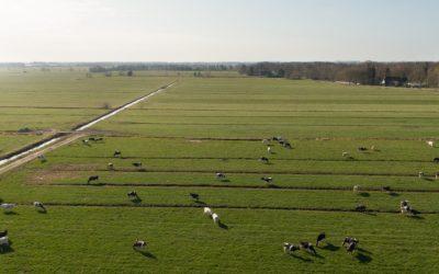 Niedersächsische Ackerbau- und Grünlandstrategie