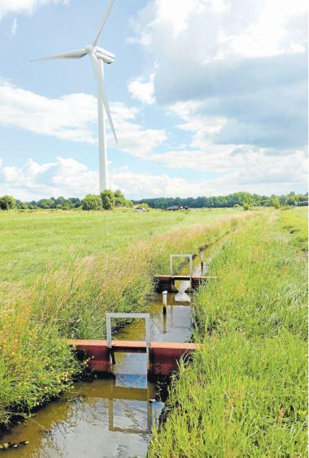 Moor- und Klimaschutz auf Grünflächen